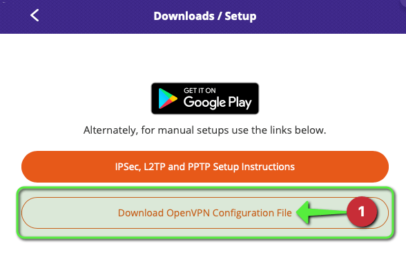 Download OpenVPN Config Button